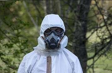 asbestos services